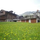 Terreno residenziale  in vendita a Sauris
